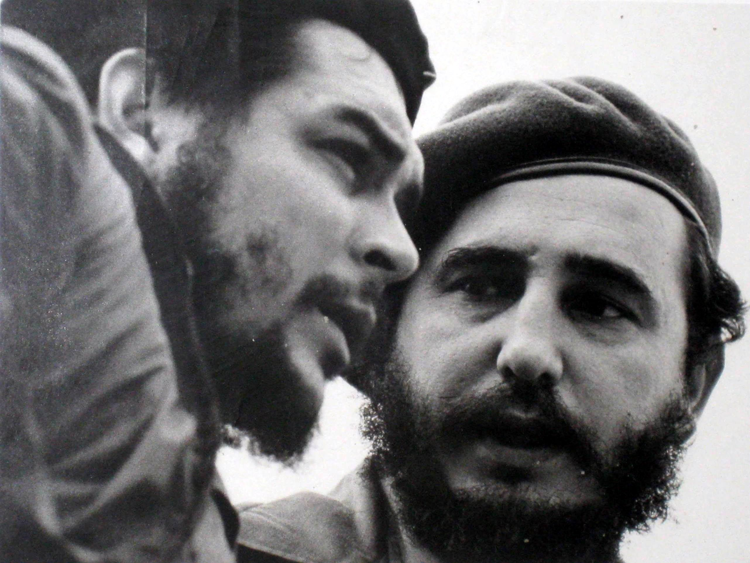fidel castro s resilience In la vie cachée de fidel castro (fidel castro's hidden life) fidel has never renounced capitalist comforts or chosen to live in austerity.