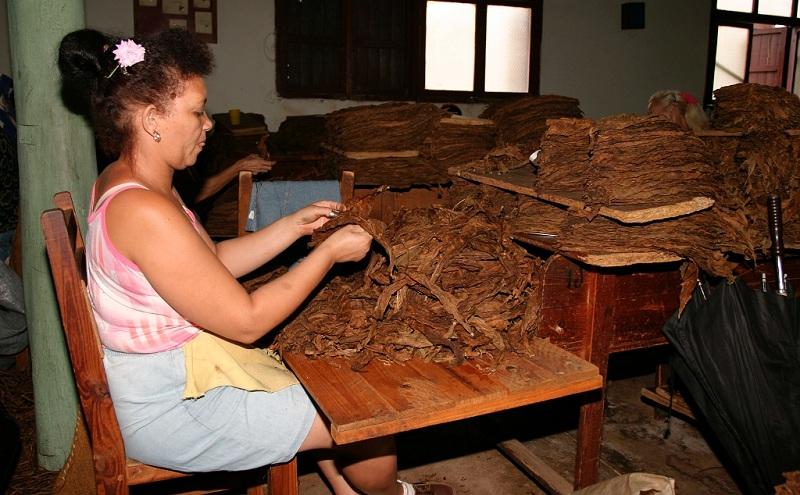сигары cuba havana varadero cubagood.com куба гавана варадеро тур