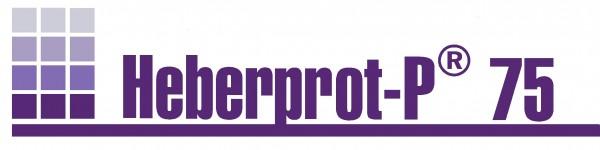 LOGO - SUPER-HEBERPROT1222